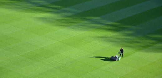 Traktor do koszenia trawy – ile kosztuje?